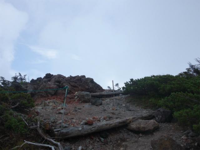 北横岳(大河原峠~双子池)登山口コースガイド 森林限界【登山口ナビ】