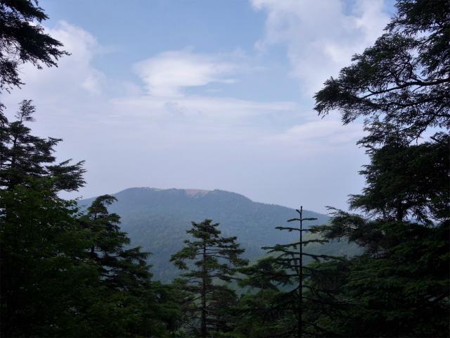 北横岳(大河原峠~双子池)登山口コースガイド【登山口ナビ】