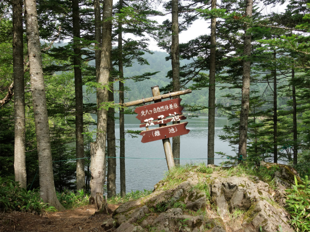 北横岳(大河原峠~双子池)登山口コースガイド 雌池【登山口ナビ】