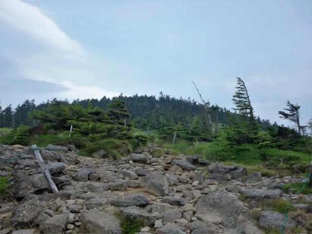北横岳(大河原峠~双子池)登山口コースガイド 露岩【登山口ナビ】