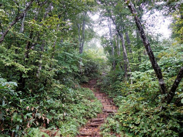 八海山(薬師岳~八ツ峰~入道岳)階段【登山口コースガイド】