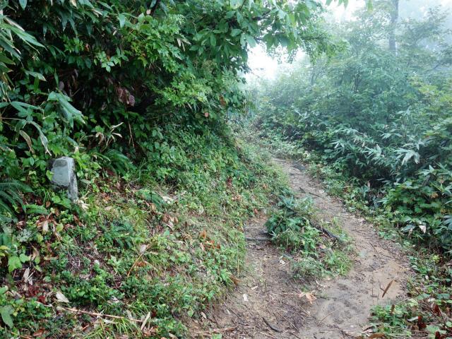 八海山(薬師岳~八ツ峰~入道岳)五合目石柱【登山口コースガイド】