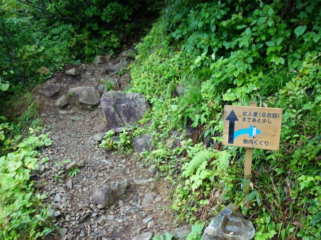 八海山(薬師岳~八ツ峰~入道岳)胎内くぐり分岐【登山口コースガイド】