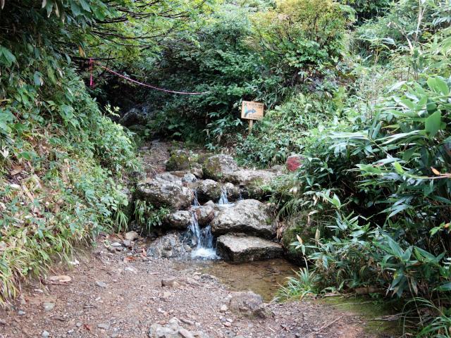 八海山(薬師岳~八ツ峰~入道岳)祓川【登山口コースガイド】
