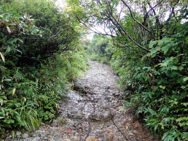 八海山(薬師岳~八ツ峰~入道岳)長い鎖場【登山口コースガイド】