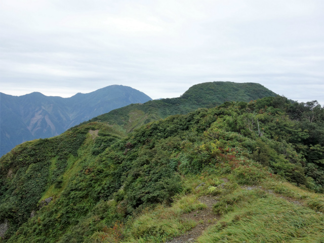 八海山(薬師岳~八ツ峰~入道岳)稜線の道【登山口コースガイド】