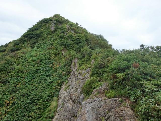 八海山(薬師岳~八ツ峰~入道岳)入道岳直下の急登【登山口コースガイド】