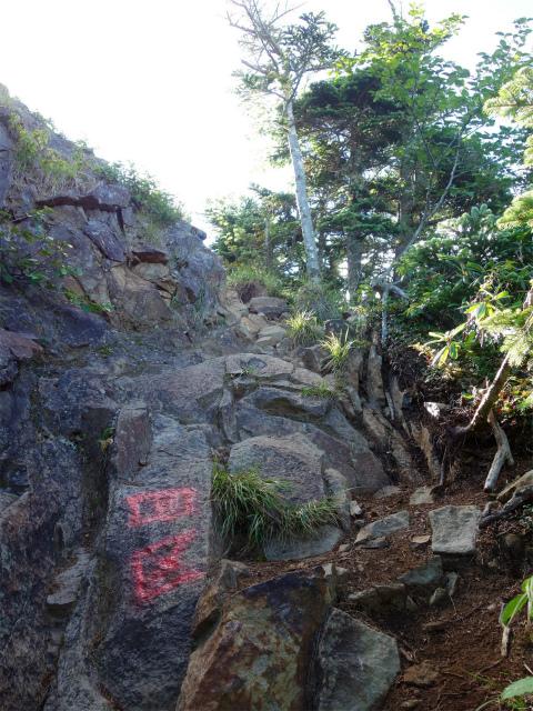 八ヶ岳・阿弥陀岳(御小屋尾根)登山口コースガイド 岩稜【登山口ナビ】