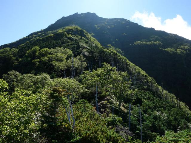 八ヶ岳・阿弥陀岳(御小屋尾根)登山口コースガイド 露岩からの阿弥陀岳【登山口ナビ】