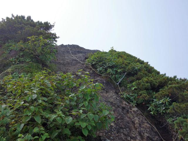 八ヶ岳・阿弥陀岳(御小屋尾根)登山口コースガイド 摩利支天【登山口ナビ】