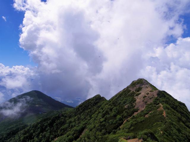 八ヶ岳・権現岳(西岳~源治新道)登山口コースガイド 権現岳からのギボシと編笠山【登山口ナビ】