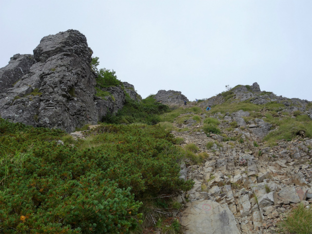 八ヶ岳・権現岳(西岳~源治新道)登山口コースガイド岩峰脇の急登【登山口ナビ】
