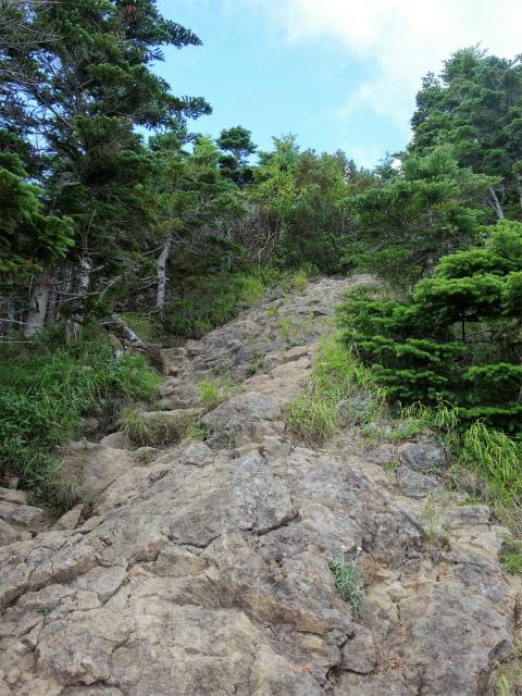 八ヶ岳・権現岳(西岳~源治新道)登山口コースガイド 露岩の急登【登山口ナビ】