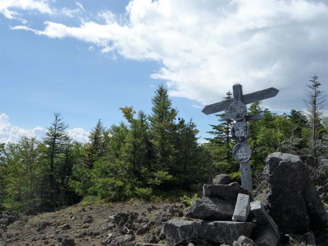 八ヶ岳・権現岳(西岳~源治新道)登山口コースガイド 西岳山頂【登山口ナビ】