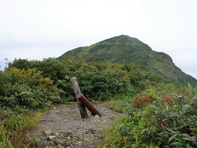 八海山(阿寺山~五竜岳~入道岳)登山口コースガイド 五竜岳山頂【登山口ナビ】