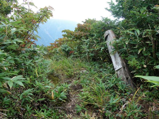 八海山(阿寺山~五竜岳~入道岳)登山口コースガイド 阿寺山山頂標【登山口ナビ】