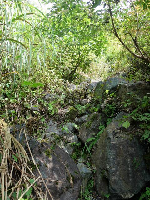 八海山(阿寺山~五竜岳~入道岳)登山口コースガイド 岩の急登【登山口ナビ】