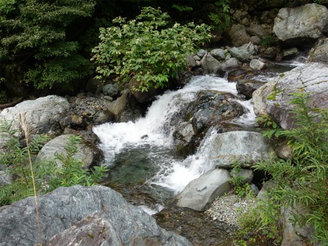 八海山(阿寺山~五竜岳~入道岳)登山口コースガイド ジャバミ沢出合【登山口ナビ】