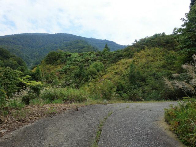 八海山(阿寺山~五竜岳~入道岳)登山口コースガイド ヘアピンカーブ入山口【登山口ナビ】