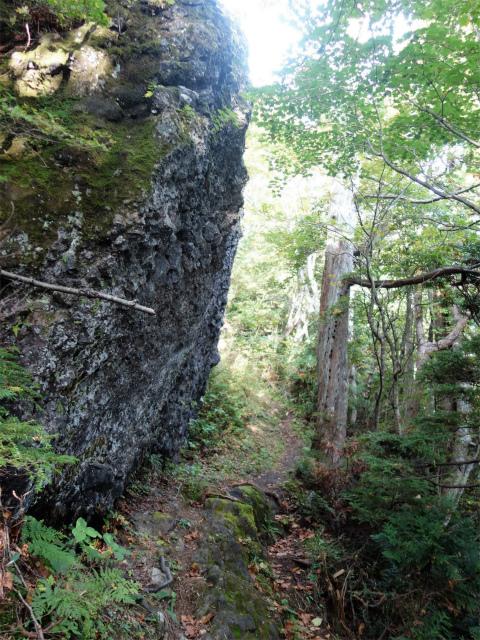 武尊山(不動岳~川場剣ヶ峰)登山口コースガイド 巨岩【登山口ナビ】