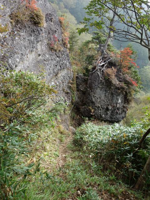 武尊山(不動岳~川場剣ヶ峰)登山口コースガイド 岩峰基部【登山口ナビ】
