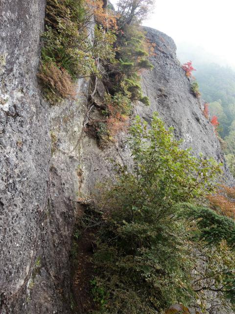 武尊山(不動岳~川場剣ヶ峰)登山口コースガイド カニのタテバイ・ヨコバイ【登山口ナビ】
