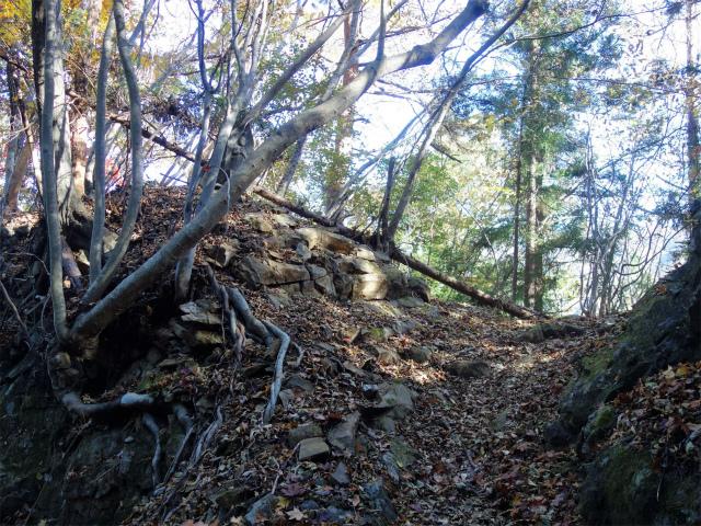 谷急山(旧国民宿舎~三方境)登山口コースガイド 馬頭観音像【登山口ナビ】