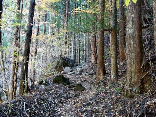 谷急山(旧国民宿舎~三方境)登山口コースガイド 沢沿い【登山口ナビ】