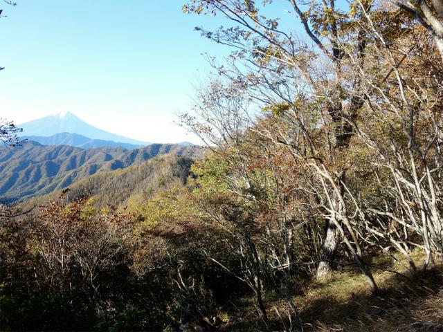 牛奥ノ雁ヶ腹摺山・小金沢山(大峠~黒岳)登山口コースガイド【登山口ナビ】
