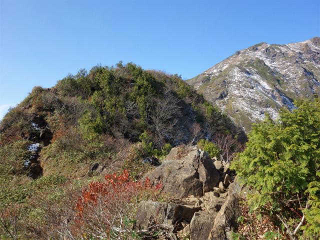 谷川岳 トマノ耳/オキノ耳(西黒尾根)登山口コースガイド ラクダのコブ手前【登山口ナビ】