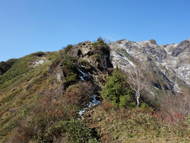 谷川岳 トマノ耳/オキノ耳(西黒尾根)登山口コースガイド ラクダのコブ【登山口ナビ】