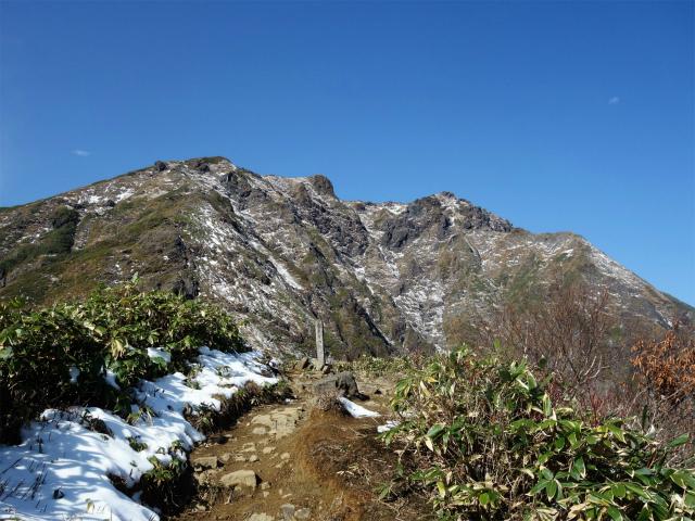 谷川岳 トマノ耳/オキノ耳(西黒尾根)登山口コースガイド ラクダの背【登山口ナビ】