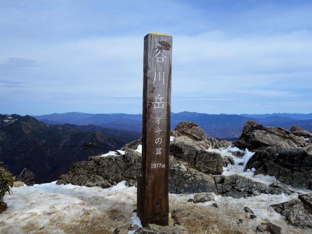 谷川岳 トマノ耳/オキノ耳(西黒尾根)登山口コースガイド オキノ耳山頂【登山口ナビ】