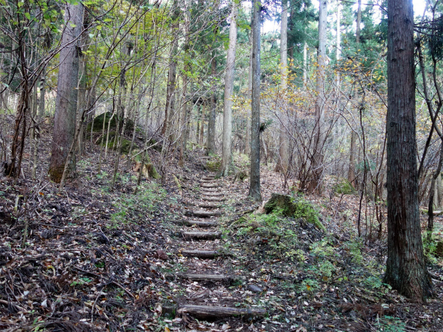 裏妙義・丁須の頭(籠沢コース~三方境周回)登山口コースガイド 木段【登山口ナビ】