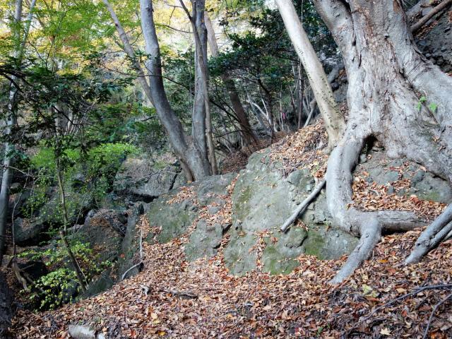 裏妙義・丁須の頭(籠沢コース~三方境周回)登山口コースガイド 高巻き【登山口ナビ】