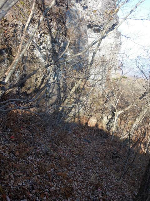 裏妙義・丁須の頭(籠沢コース~三方境周回)登山口コースガイド 岩峰のトラバース【登山口ナビ】