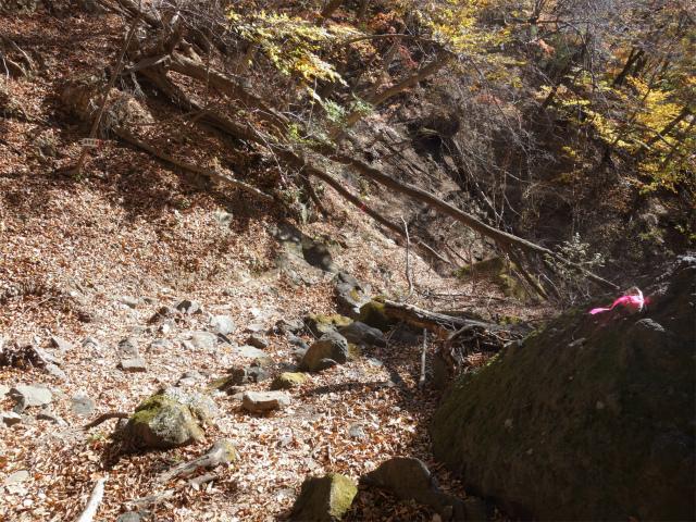 裏妙義・丁須の頭(籠沢コース~三方境周回)登山口コースガイド【登山口ナビ】