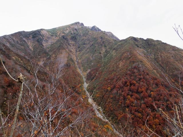 谷川岳 トマノ耳/オキノ耳(田尻・天神尾根)登山口コースガイド【登山口ナビ】