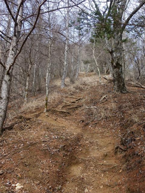 今倉山・高岩(道坂峠~パラジマ沢コース)登山口コースガイド 急坂【登山口ナビ】