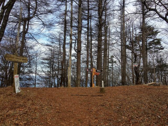 今倉山・高岩(道坂峠~パラジマ沢コース)登山口コースガイド 東峰山頂【登山口ナビ】