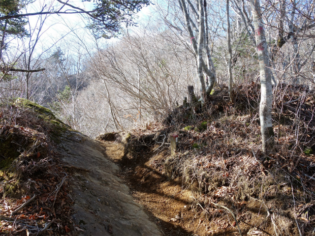御正体山(道坂峠コース)登山口コースガイド【登山口ナビ】