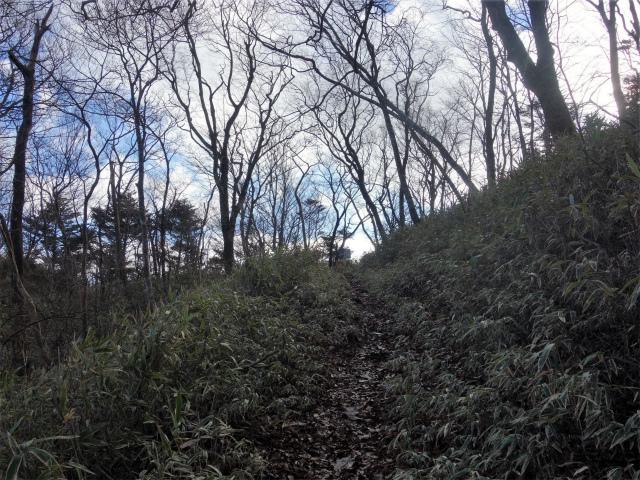 雨ヶ岳・タカデッキ(本栖湖~端足峠)登山口コースガイド トラバース【登山口ナビ】