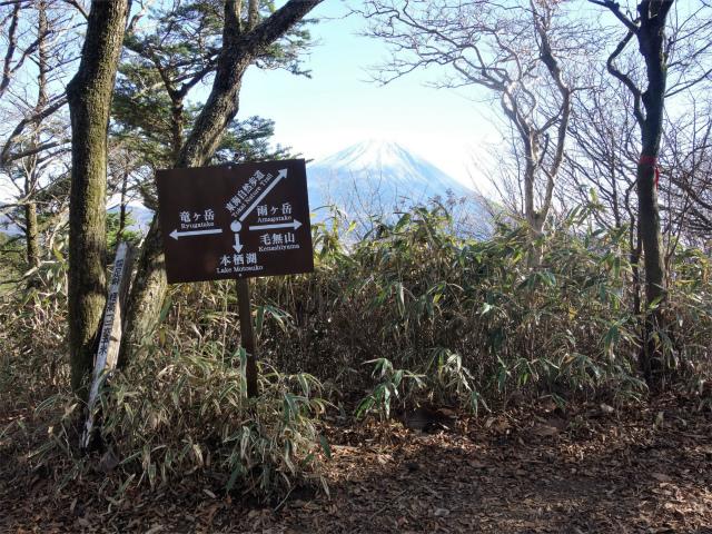 雨ヶ岳・タカデッキ(本栖湖~端足峠)登山口コースガイド 端足峠からの富士山【登山口ナビ】