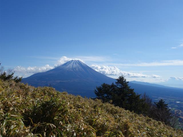 雨ヶ岳・タカデッキ(本栖湖~端足峠)登山口コースガイド タカデッキ山頂直下からの富士山の眺望【登山口ナビ】