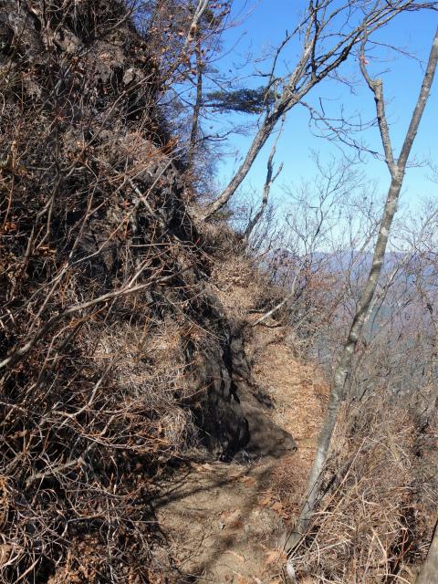 谷急山(旧国民宿舎~三方境)登山口コースガイド 急登【登山口ナビ】