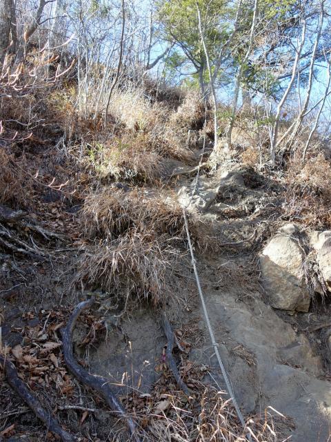 谷急山(旧国民宿舎~三方境)登山口コースガイド P2山頂直下のロープ急登【登山口ナビ】