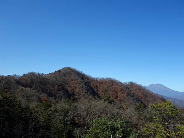 谷急山(旧国民宿舎~三方境)登山口コースガイド P2山頂からの谷急山【登山口ナビ】