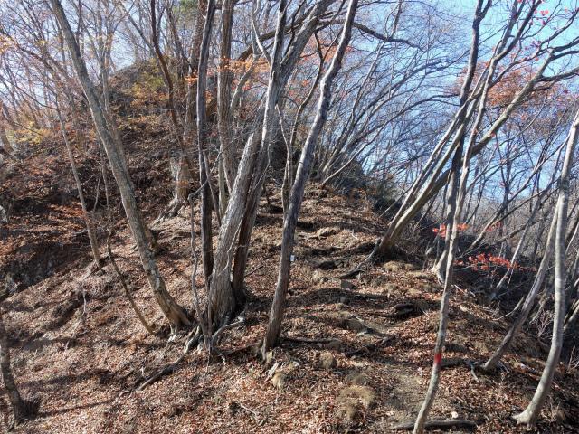 谷急山(旧国民宿舎~三方境)登山口コースガイド P4【登山口ナビ】