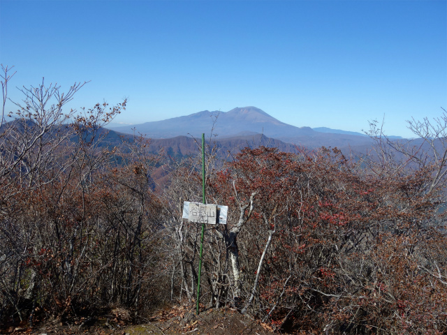 谷急山(旧国民宿舎~三方境)登山口コースガイド 谷急山山頂【登山口ナビ】