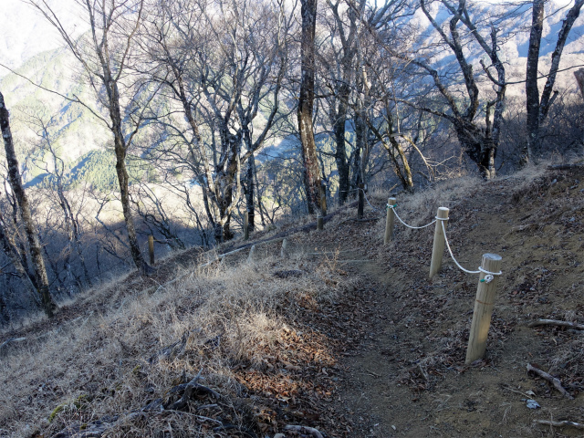 塔ノ岳(尊仏ノ土平~西尾根)登山口コースガイド 鍋割山北稜コース分岐【登山口ナビ】